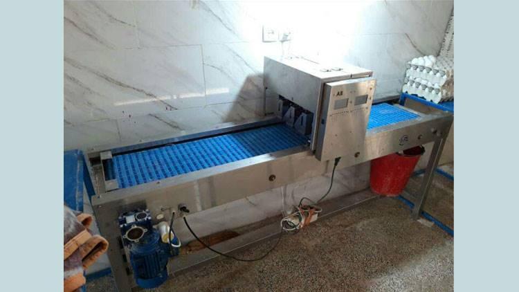دستگاه چاپگر تخم مرغ
