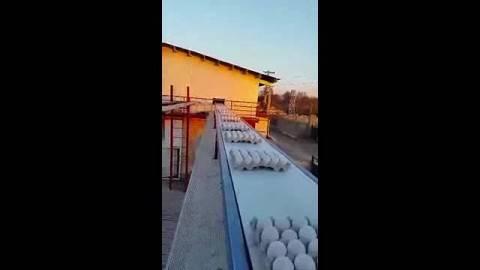 کانوایر تسمه ای هوایی انتقال شانه ی تخم مرغ