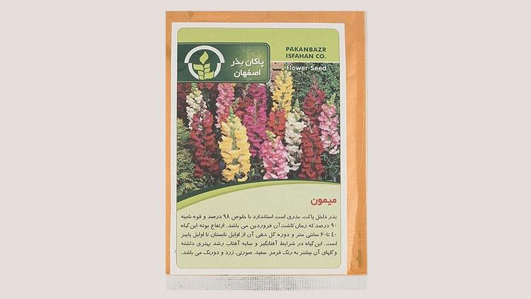 بذر خانگی گل میمون
