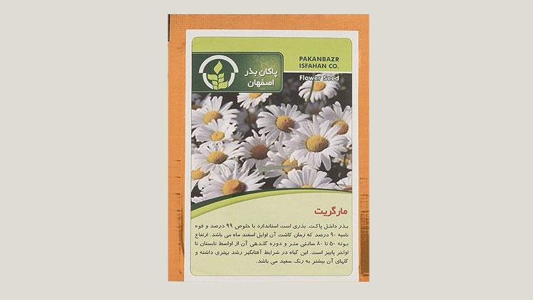 بذر خانگی گل مارگریت