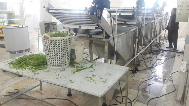 دستگاه شستشوی سبزیجات