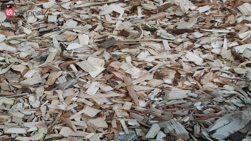 کراشر یا چوب پودر کن برقی مدل Tp900