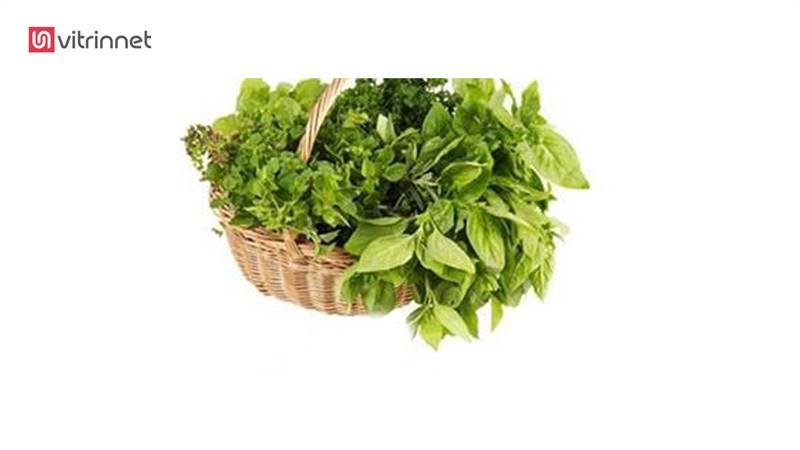 دستگاه آبگیری سبزیجات سانترفیوژ