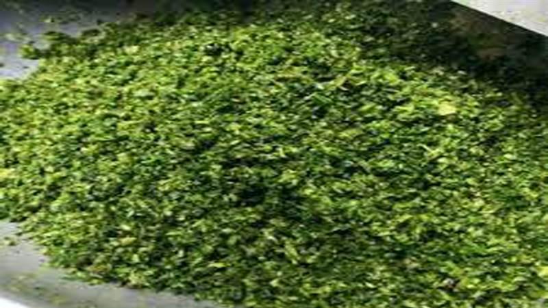دستگاه سبزی خردکن ۱کیلویی  مدل ۲۰۵ خزر