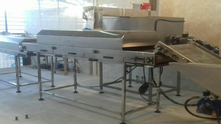 خط تولید پیاز داغ یا پیاز سرخ شده