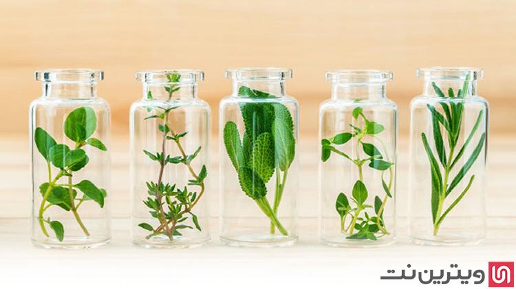 کسب خانگی با تولید عرقیات گیاهی