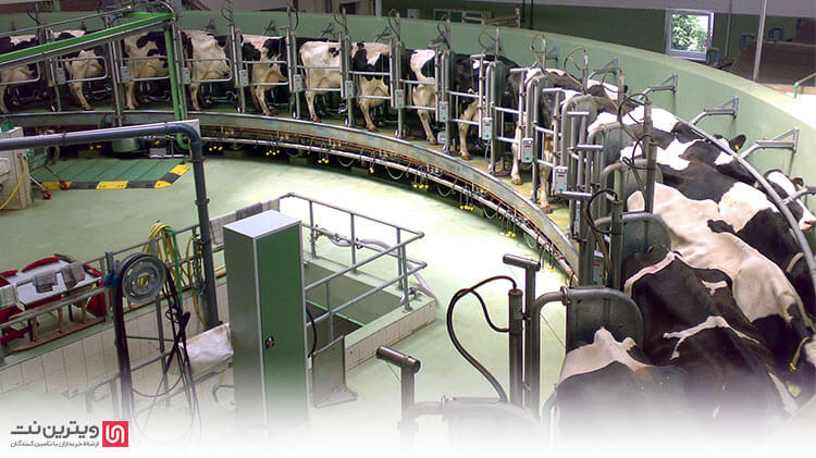 یکی از تجهیزات بسیار مهم در دامداری های دام های شیرده لاینر است که از حساسیت بسیار زیادی برخوردار است.