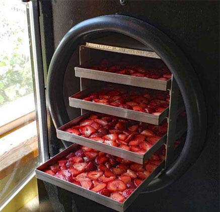 ابعاد دستگاه های سبزی و میوه خشک کن صنعتی بنا به ظرفیتشان متفاوت است
