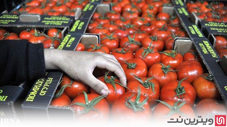 کسب درآمد در منزل از تولید رب گوجه فرنگی