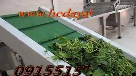 دستگاه سبزی پاک کن