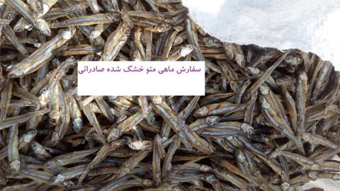 ماهی متو خشک شده صادراتی , ماهی و میگو