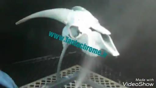 آبکاری فانتاکروم , دستگاه پاشش رنگ